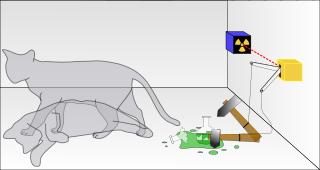 El experimento del gato de Schrödinger