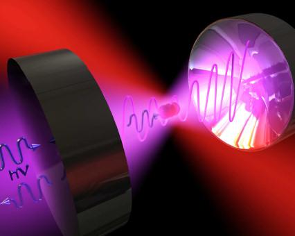 quantum virus